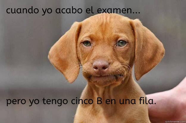 spanish assignment