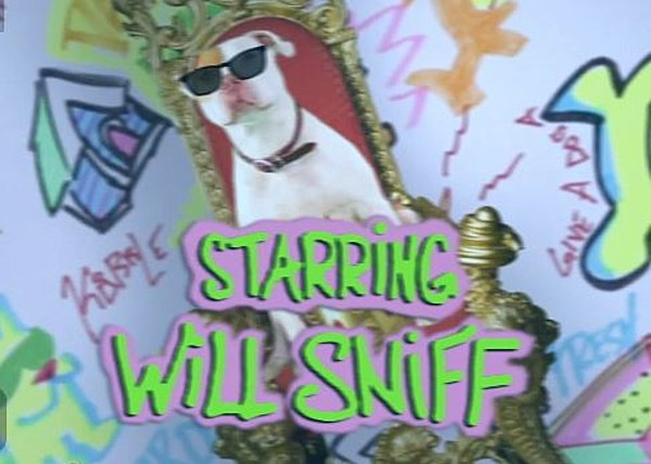Will Sniff from the fresh prince of bell air